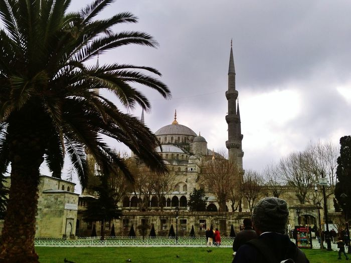 Sultanahmetcamii SultanAhmetBlueMosque Palmiya ISLAM♥ Islamic Architecture Muslim History Travel Destinations Architecture Tree Monument Religion Built Structure Day Memorial Grass Outdoors People Adults Only Sky Adult City Ancient Civilization Eyem Eyemphotography