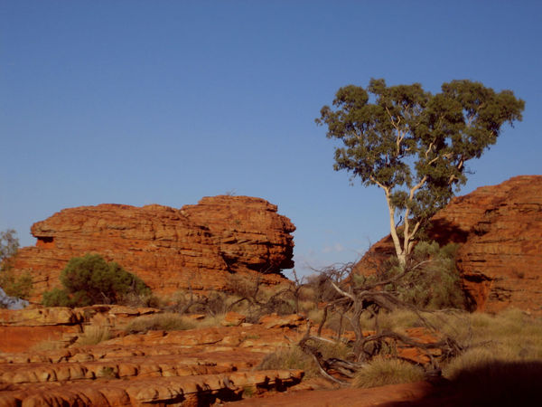 Beauty In Nature Geology Landscape Mountain Nature Rock - Object Rock Formation Travel Destinations Australia Kings Canyon Perspectives On Nature
