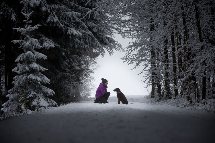 Talking to the dog Adult Adventure Beauty In Nature Cold Temperature Day Females Forest Friendship Full Length Hiking Labrador Labrador Retriever Nature Outdoor Photography Outdoors People Snow Snow ❄ Togetherness Tree Walking Wandering Warm Clothing Winter Woman