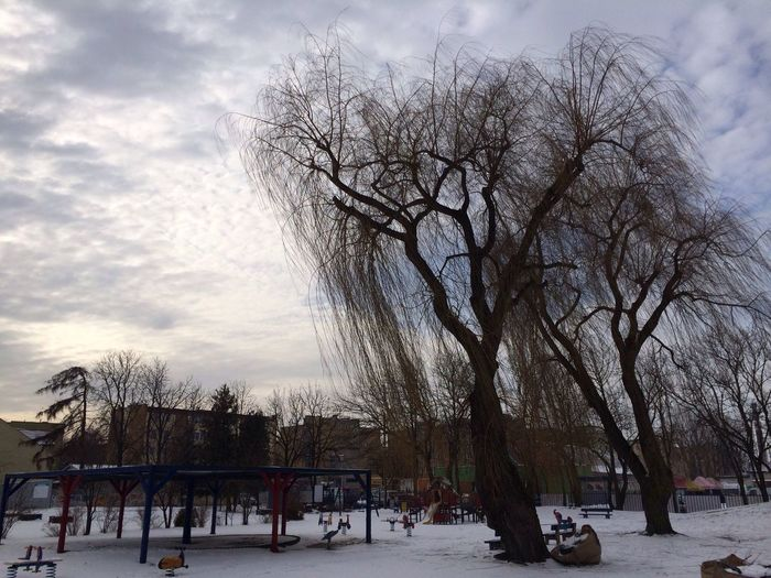Winter on playground Winter Snow Nature Landscape