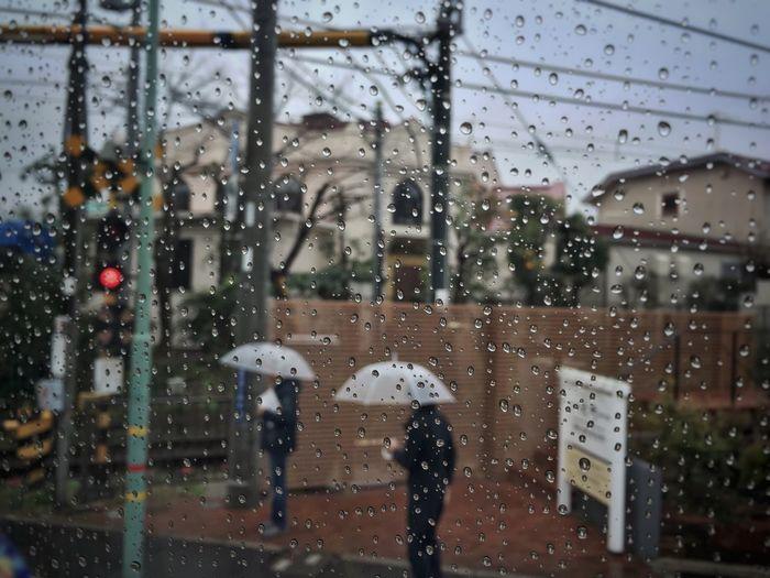 Rainy Days Raindrops Nippon Japan