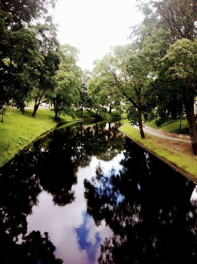 At The Park Hanging Out Enjoying Life Water Reflections Water Creek Riga Latvia Riga Trees #leaves TreesAndWater