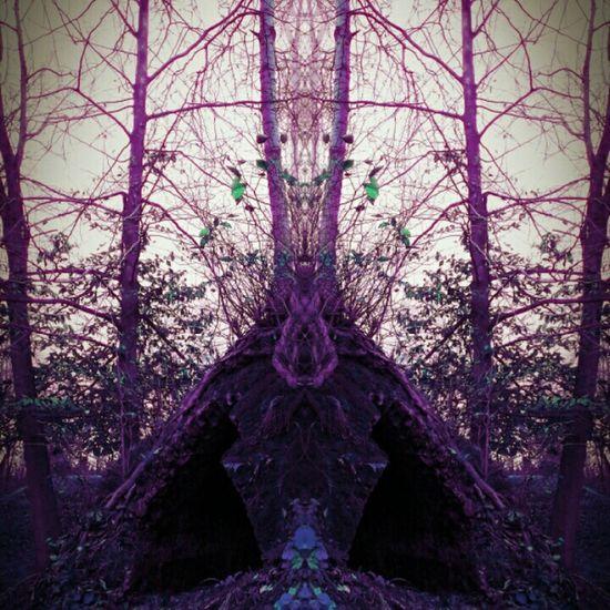 Hiddensee Hidden Art Hidden In Nature Hidden Another Dimension Hidden Places Hidden Beauty Hidden Treasure Hidden In Plain Sight Hidden Paradise Hidden Within Hidden Treasures Hiddenbeauty Hiddengem Check This Out Hiddenplaces Alternate Reality... Alternate Universe Alternateworld Another Place Light And Dark