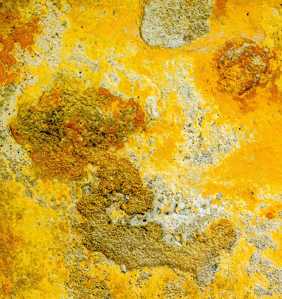 Abstract Nature Abstract Nature Eyemgallery Lichen Abstract Abstract Backgrounds Abstract Design Close-up Fungus 🍄 Lichen On Stone Multi Colored No People Old Orange Color Outdoors Pattern Rough Textured  Weathered Yellow