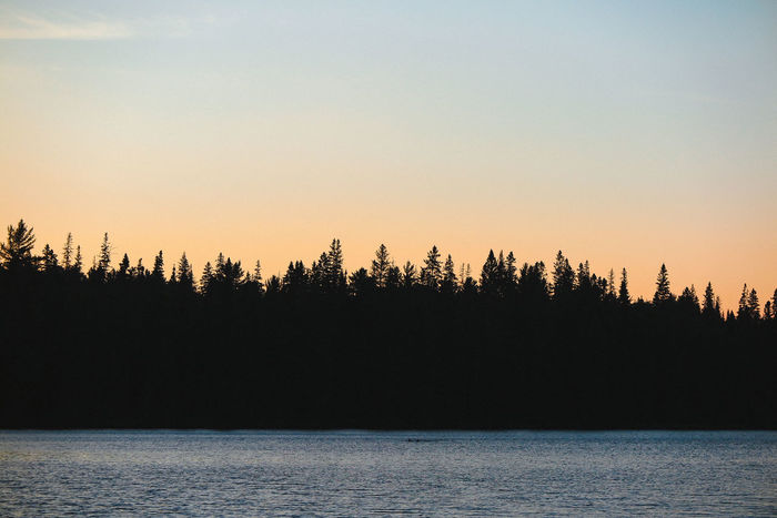 Algonquin Park Algonquinpark Algonquinprovincialpark Beauty In Nature Clear Sky Day Landscape Nature No People Outdoors Reflection Scenics Sea Silhouette Sky Sunset Tranquil Scene Tranquility Tree Water Waterfront
