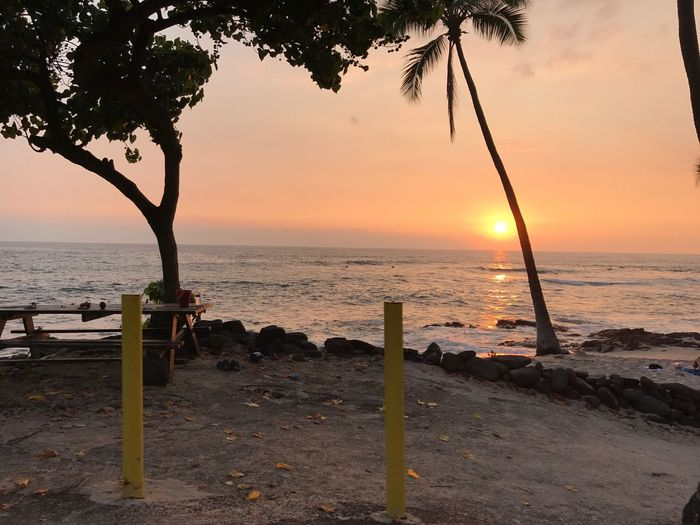 Best Evening Ever Kailua-Kona Hawaii Hookenabeach Sea Beach Water Horizon Over Water Sand Tranquility Sunset Nature Beauty In Nature Scenics Tranquil Scene Outdoors No People Sky Tree Day