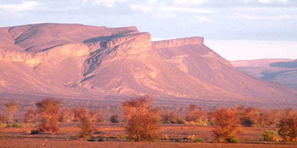 Bio Desert Deserts Around The World Green Jar Mudhouse Sahara Travel