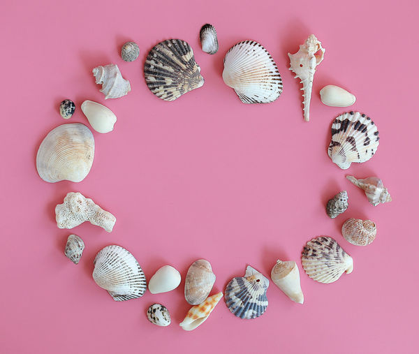 Background Beach Beach Party Beauty In Nature Blancoynegro Collection Copyspace Coral Greeting Happy Happy Holidays Happy Vacation  Hello Summer Holiday Nature Pink Pink Color Seashell Seaside Shell Summer Summer Sale Text Variety Wording