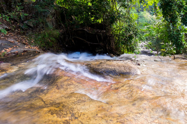 Water flowing over the rocks! Mountain Creek Beauty In Nature Day Forest Long Exposure Motion Nature No People Outdoors River Stream Rock - Object Scenics Tranquil Scene Tranquility Tree Water Water Flowing Over Rocks Waterfall