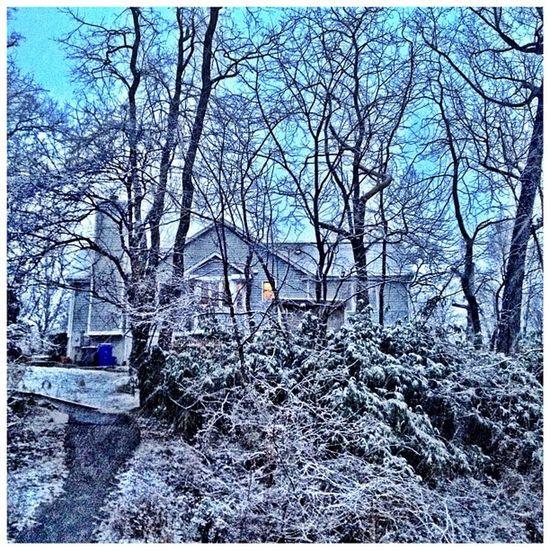 A little January snow. #silverspring #snow #weather #iphoneography #jomo Weather IPhoneography Snow Silverspring Jomo
