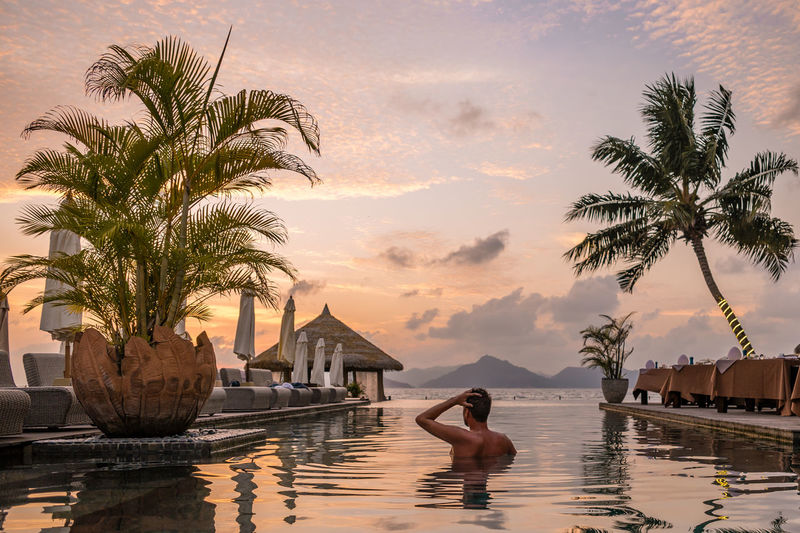 Luxury vacation Tropical island Seychelles Man Seychelles Seychelles Islands Tropical Paradise Adult Boy Infinity Pool La Digue Leisure Activity Lifestyles Luxury Nature One Person Outdoors Palm Tree Plant Pool Real People Sky Swimming Pool Tree Tropical Climate Vacations Water Young Adult