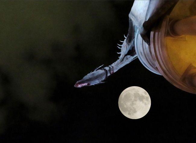Close-up Spirituality No People Outdoors Night Gringotts Florida Harrypotter Nature Sky Dragon Moon Fullmoon