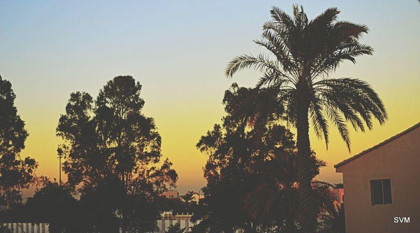 Reason why I love sunsets, cuz they are so damn beautiful :) Sunset #sun #clouds #skylovers #sky #nature #beautifulinnature #naturalbeauty #photography #landscape Nikon D5100  Kingdom Of Bahrain Bahrain