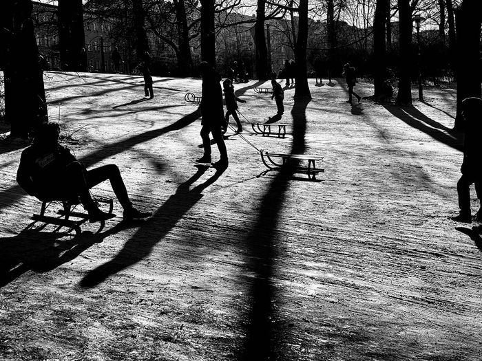 Silhouette people in park