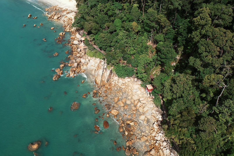 Beach Beauty In Nature Day Green Color Group Of People High Angle View Land Leisure Activity Lifestyles Men Nature Outdoors Plant Real People Scenics - Nature Sea Swimming Tree Water