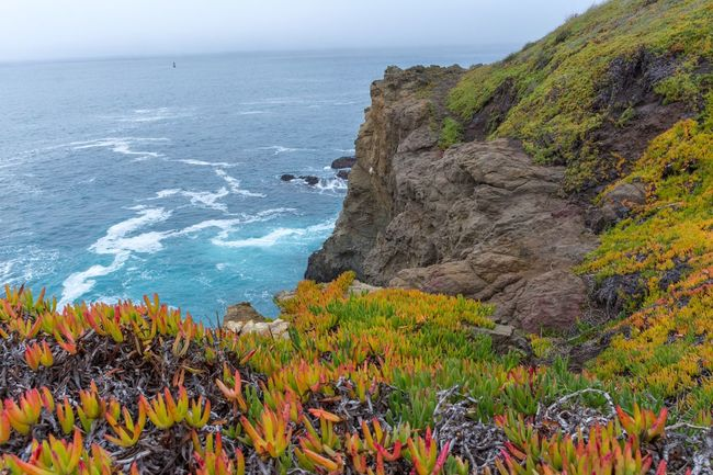 California Coast Rock Formation Tranquil Scene Outdoors Tranquility Day Plant Sky Clear Sky No People Cliff