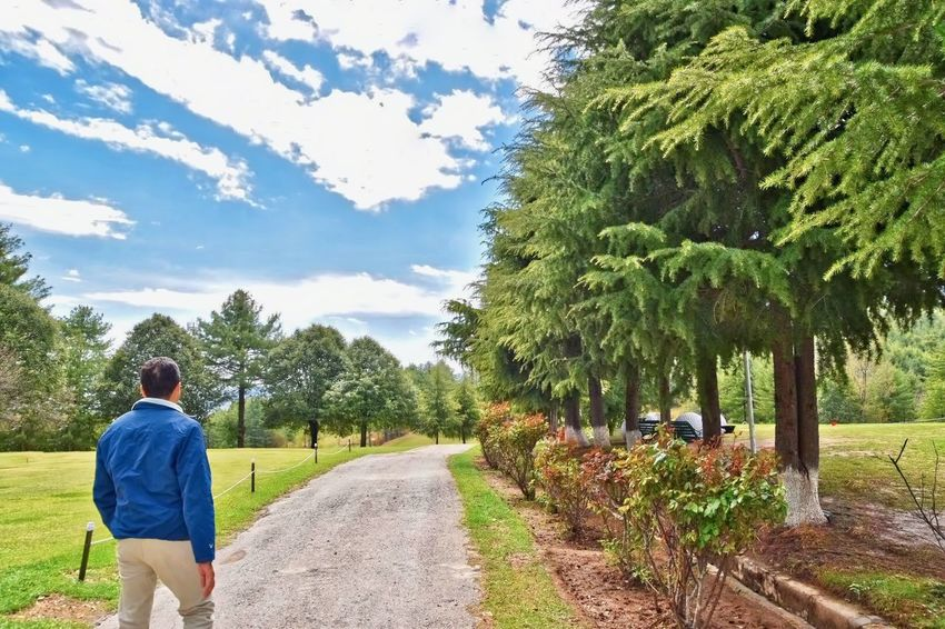 Adults Only Beauty In Nature Cloud - Sky Evergreen Tree Full Length Growth Healthy Lifestyle Leisure Activity Mountain Nature One Person Outdoors Pathway Rear View Sky Tree