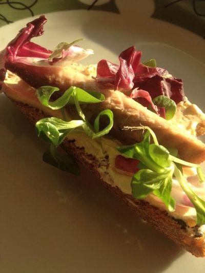 Sandwich Panino Creamcheese Fish