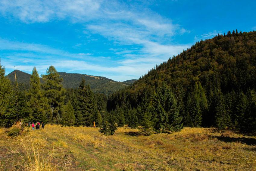 Beauty In Nature Blue Cloud - Sky Grass Hill Landscape Mountain Mountain Range Outdoors Tranquil Scene Eyeemphotography