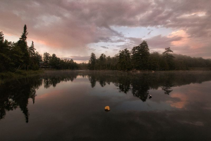 Mist on the water Outdoors Nature Beauty In Nature Light And Shadow Cottage Country Ontario, Canada Tree Water Reflection Sky Cloud - Sky Scenics Shore Foggy Horizon Over Water Non-urban Scene Sunset The Great Outdoors - 2018 EyeEm Awards