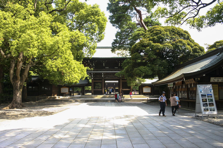 Architecture Day Landscape Meiji Shrine Nature Outdoors People Tree