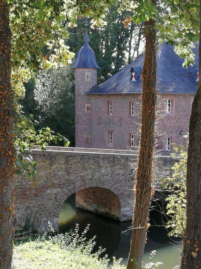 Castle Burgau Dueren Castle Burgau Dueren Tree Water Watermill Bridge - Man Made Structure Architecture Building Exterior Built Structure