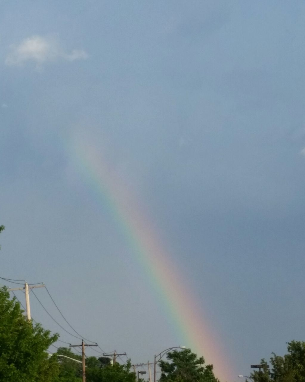 rainbow, multi colored, double rainbow, day, outdoors, tree, low angle view, sky, no people, nature, scenics, beauty in nature