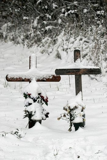 Car Accidents In Memoriam Mourning Two Crosses Cold Temperature Day Frozen Memorials Nature No People Outdoors Sadness Snow Snowing Victims Of Mobility Victims Of Road Traffic Weather White Color Winter