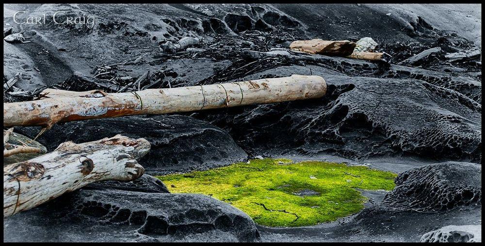 The Green Patch. DSLR Gabriola Shoreline Photoshop The KIOMI Collection