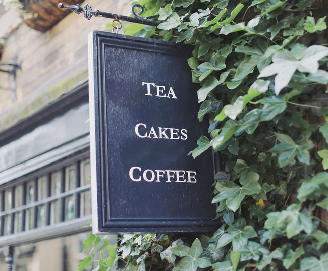 Coffee shop tea