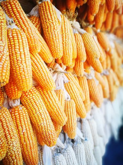 Corns for sale at market stall