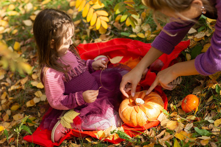 High angle view of girl and pumpkins during autumn