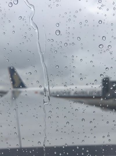 Spreading wings Holidaytrip Travel Journey Safejourney Singaporeairlines Singapore Drop Water Wet Rain No People Window Transparent