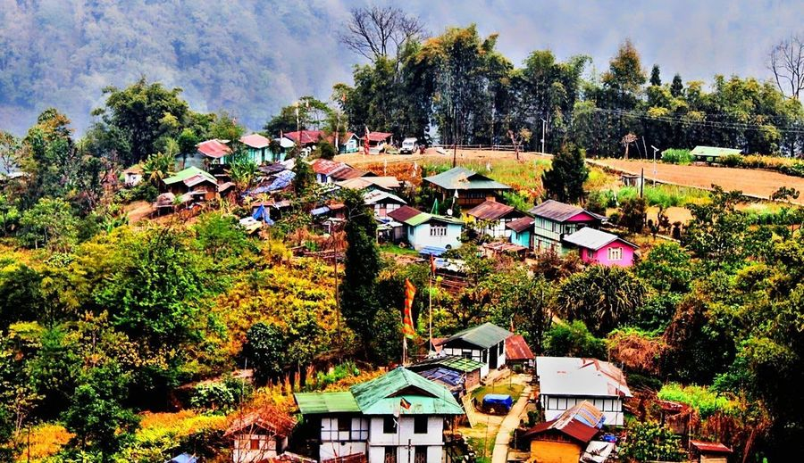 Darap Village of North East India Village VillageTourism India Sikkim Northeastindia Picturesque Picturesque Village Farming Organic Tree Flower Sky My Best Photo Stay Out Springtime Decadence