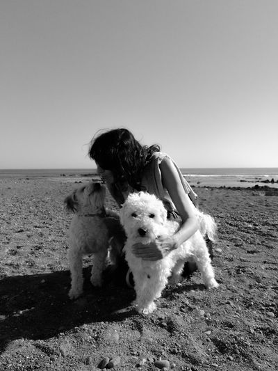 Looking At Camera Looking Each Other Pets Lover 3XSPUnity Pets Sea Beach Dog Sand Full Length Horizon Over Water