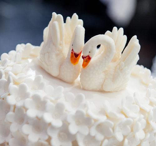 Wedding cake decorated with swans Romantic Swans Wedding Birds Cake Close-up Confectionery Couple Of Birds Couple Of Swans Cream Creamy Decorated Dessert Food Indoors  Indulgence No People Ready-to-eat Sweet Food Temptation Wedding Cake White Color