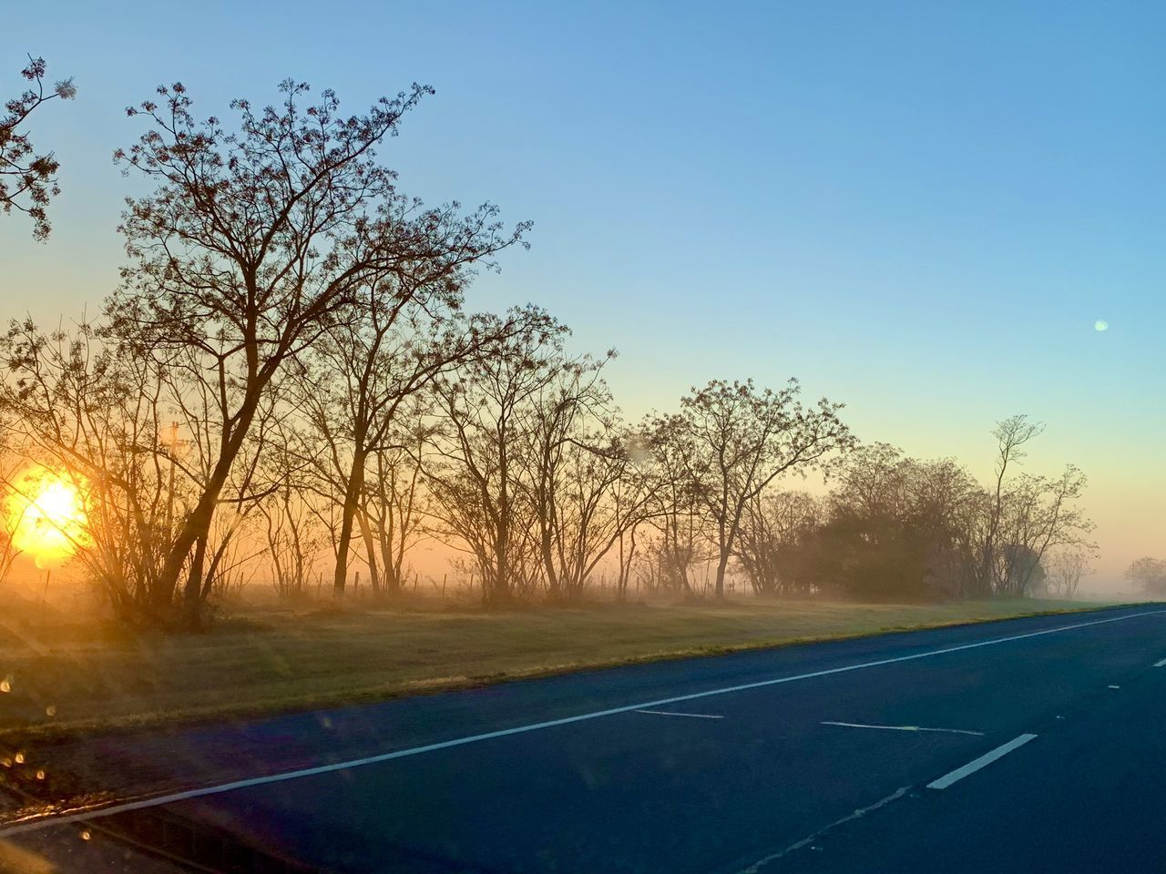 tree, sky, sunset, plant, road, nature, no people, transportation, symbol, tranquility, beauty in nature, road marking, marking, landscape, bare tree, sun, outdoors, scenics - nature, sunlight, tranquil scene, dividing line