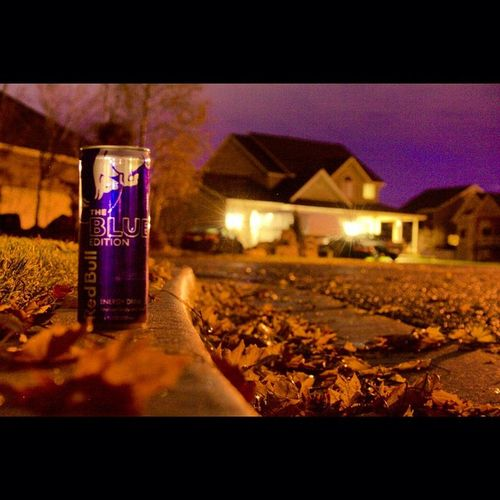 For travelers on long journeys. 💎 •_• RedBull Blueedition Fallpictures Leaves