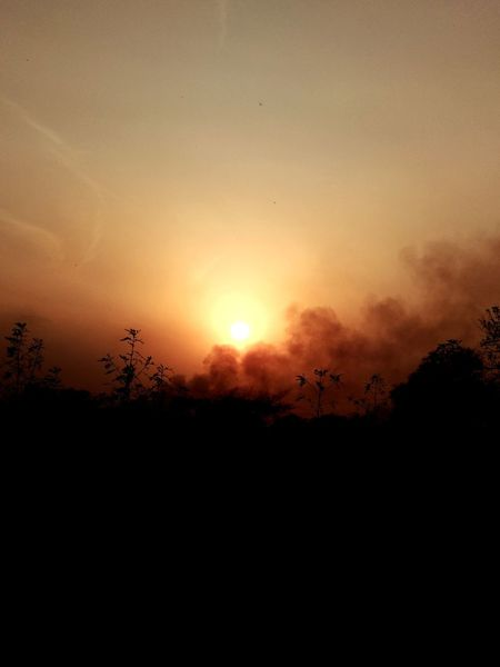 We should work on reducing the sources of pollution one day it will cover Sun as well. Pollution Pollution In My World Pollution Of The Environment Polluted Pollution Smoke Pollution Effects Pollution Can Sunset Silhouette Tree Nature Scenics Tranquil Scene Outdoors No People Sky Day