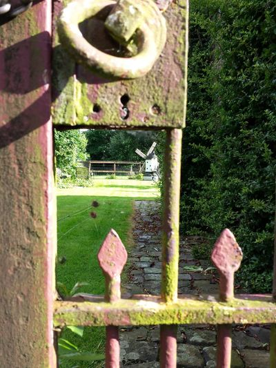 Hanging Out Taking Photos Check This Out Belgium. Belgique. Belgie. Belgien. Etc. Lanaken Through The Gate Garden View Beatiful View Sunny Day Garden Windmill.  Garden Landscape Irongate Ironwork  Home Is Where The Art Is