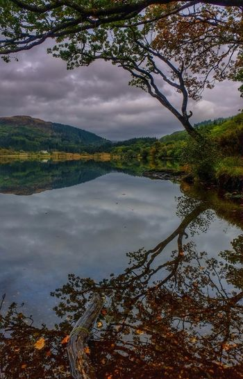 Taking Photos Fujifilmxe1 Fujifilm_xseries Scotland Loch Chon