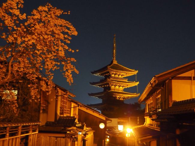 Kyoto Japan Higashiyama Yasaka-no-to Cherry Blossoms Sakura Night Tower Spring Olympus PEN-F 京都 日本 東山 八坂の塔 桜 夜 春