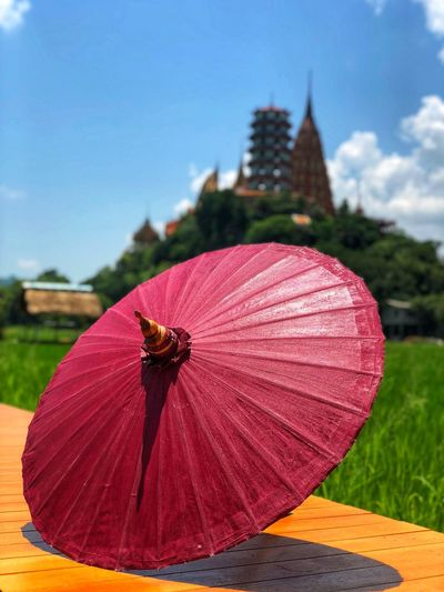 Season in the sun Sky Nature Focus On Foreground Plant Day Close-up Built Structure Umbrella Outdoors Sunlight No People Red