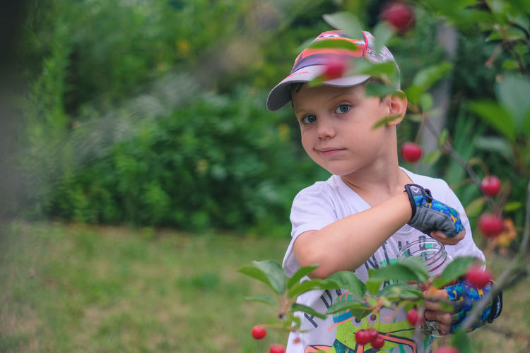 Portrait of cute boy standing by red fruits