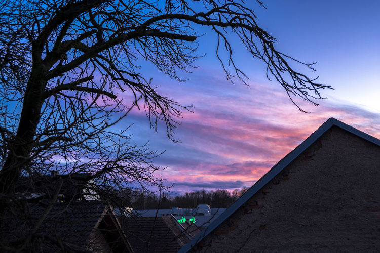 The peaceful atmosphere of the pre-Christmas evening frozen in time. Architecture Beauty In Nature Building Exterior Cloud - Sky Nature No People Outdoors Sky Sunset Tree