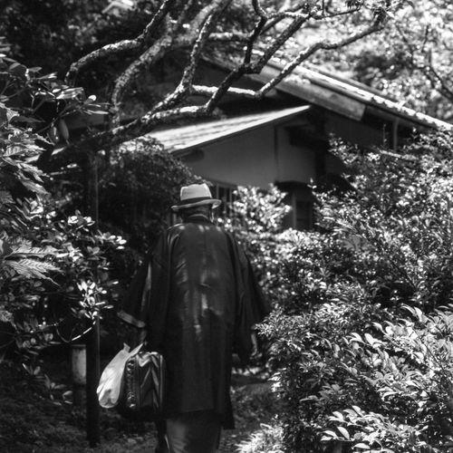 Rear view of man walking by plants