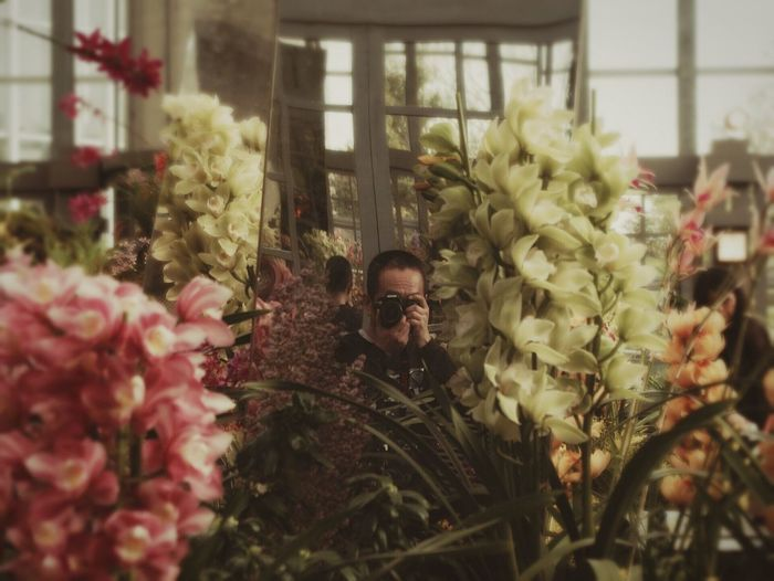 Man Photographing Flowers At Miracle Planet Museum Of Plants