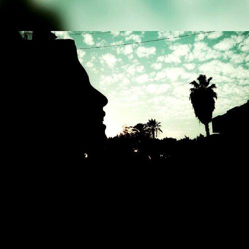 ا First Eyeem Photo