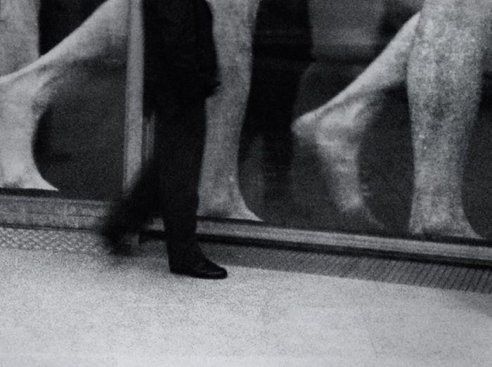 Chasing Eadweard Muybridge
