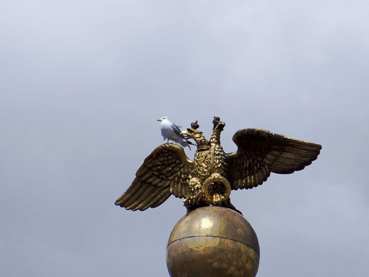 Double Eagle Pretending Animal Themes Animals In The Wild Bird Day Eagle - Bird Flying Low Angle View No People One Animal Outdoors Pretender Sculpture Sky Spread Wings Statue